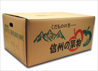 信州産 りんご サンふじ (規格外品)
